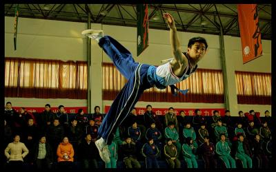 Jackie Chan Presents: Wushu